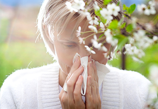 Ihre HNO Ärzte - Allergien bei Erwachsenen